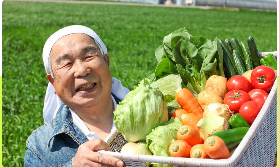 野菜採れました