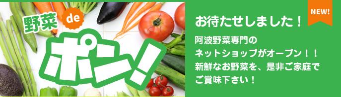 お待たせしました!阿波野菜専門のネットショップがオープン!!新鮮なお野菜を、是非ご家庭でご賞味下さい!